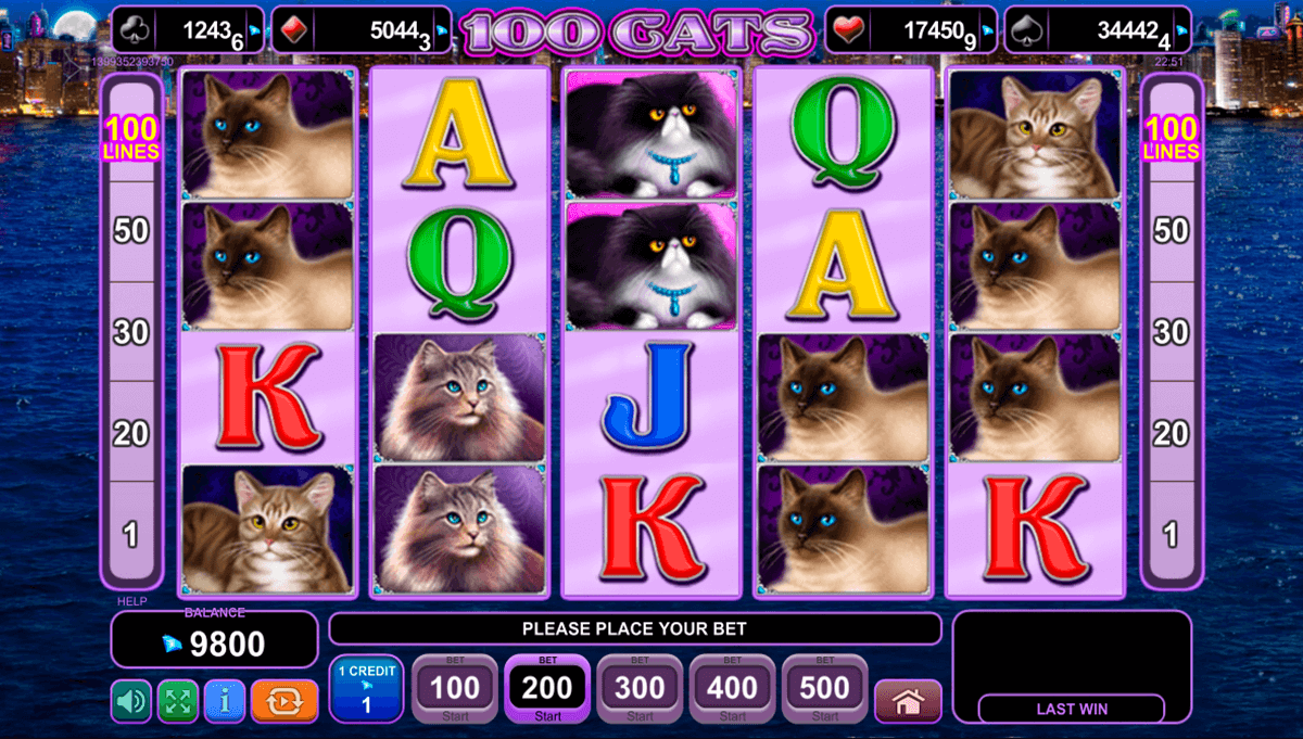 100 cats egt casino gokkasten