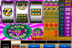 cash clams microgaming casino gokkasten