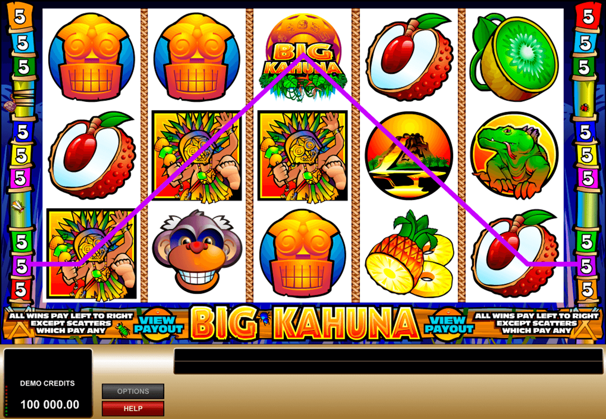 big kahuna microgaming casino gokkasten