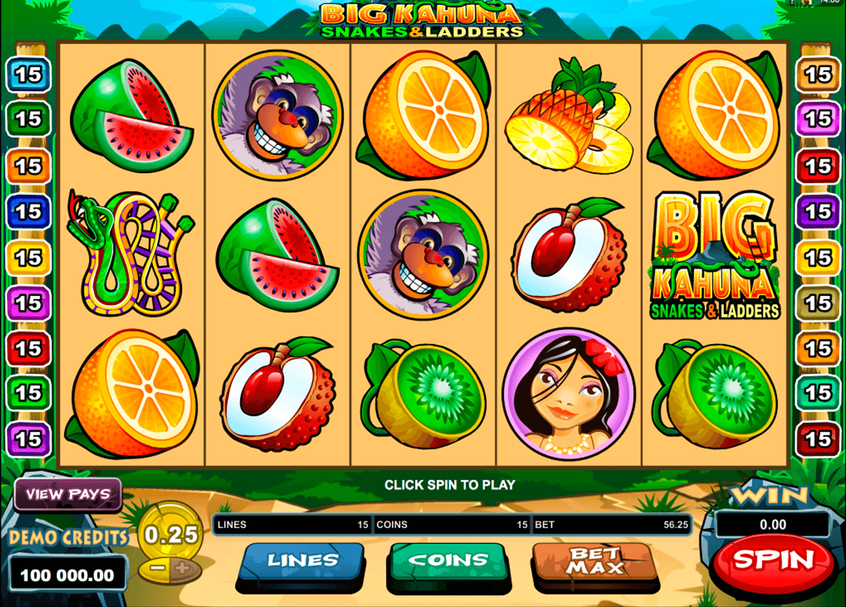 big kahuna snakes and ladders microgaming casino gokkasten