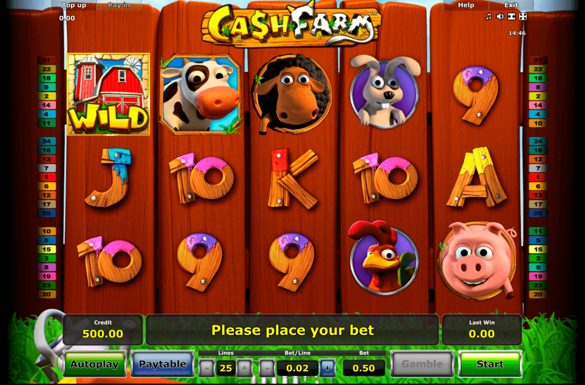 cash farm novomatic casino gokkasten