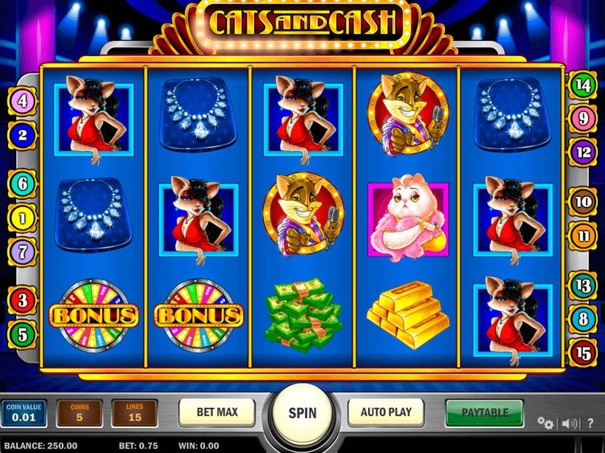 cats and cash playn go casino gokkasten