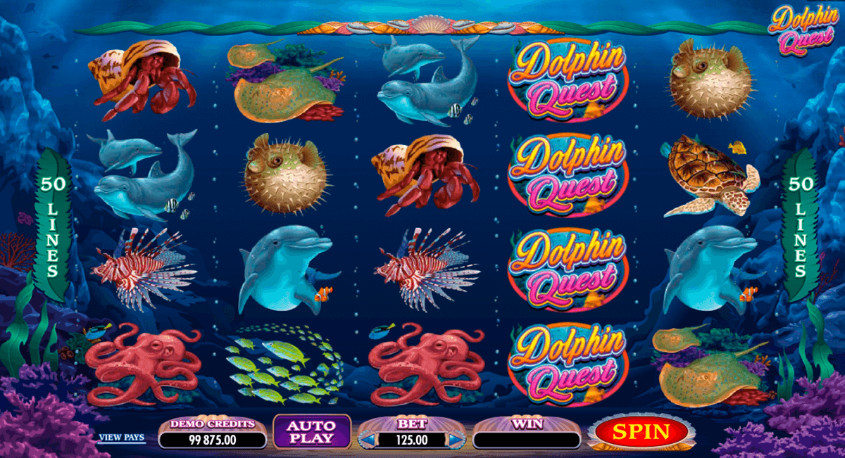 dolphin quest microgaming casino gokkasten