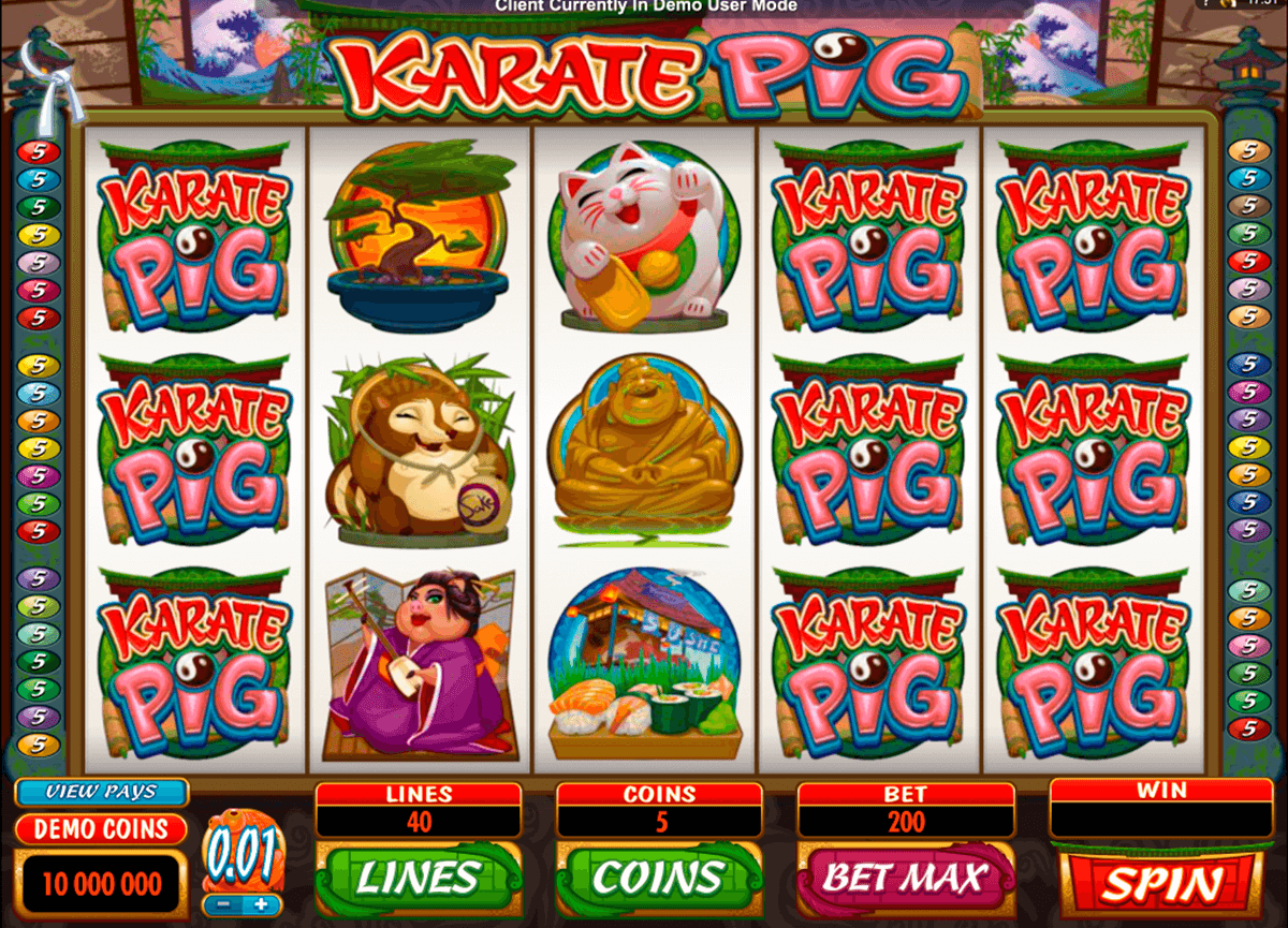 karate pig microgaming casino gokkasten