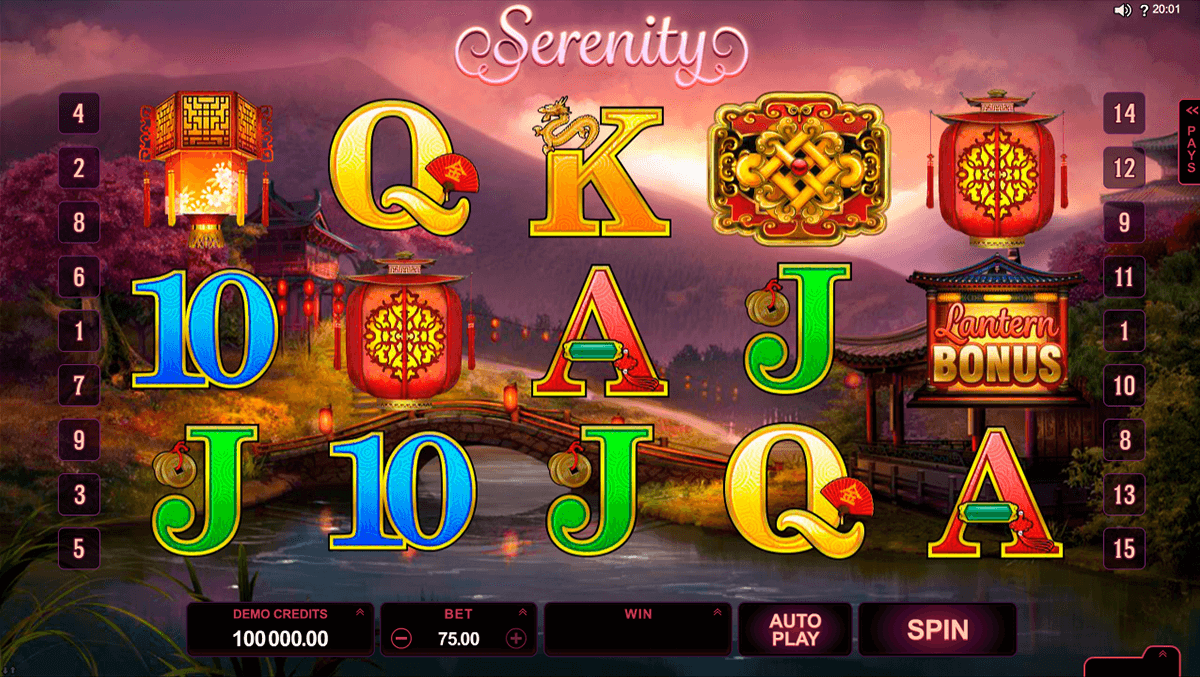 lucky twins microgaming casino gokkasten