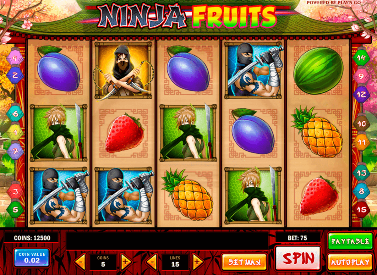 ninja fruits playn go casino gokkasten