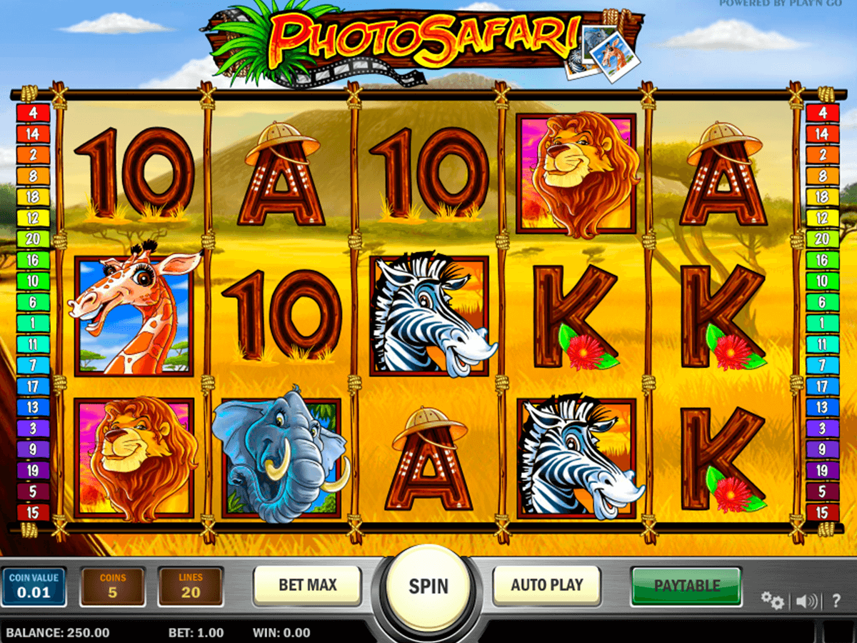 photo safari playn go casino gokkasten
