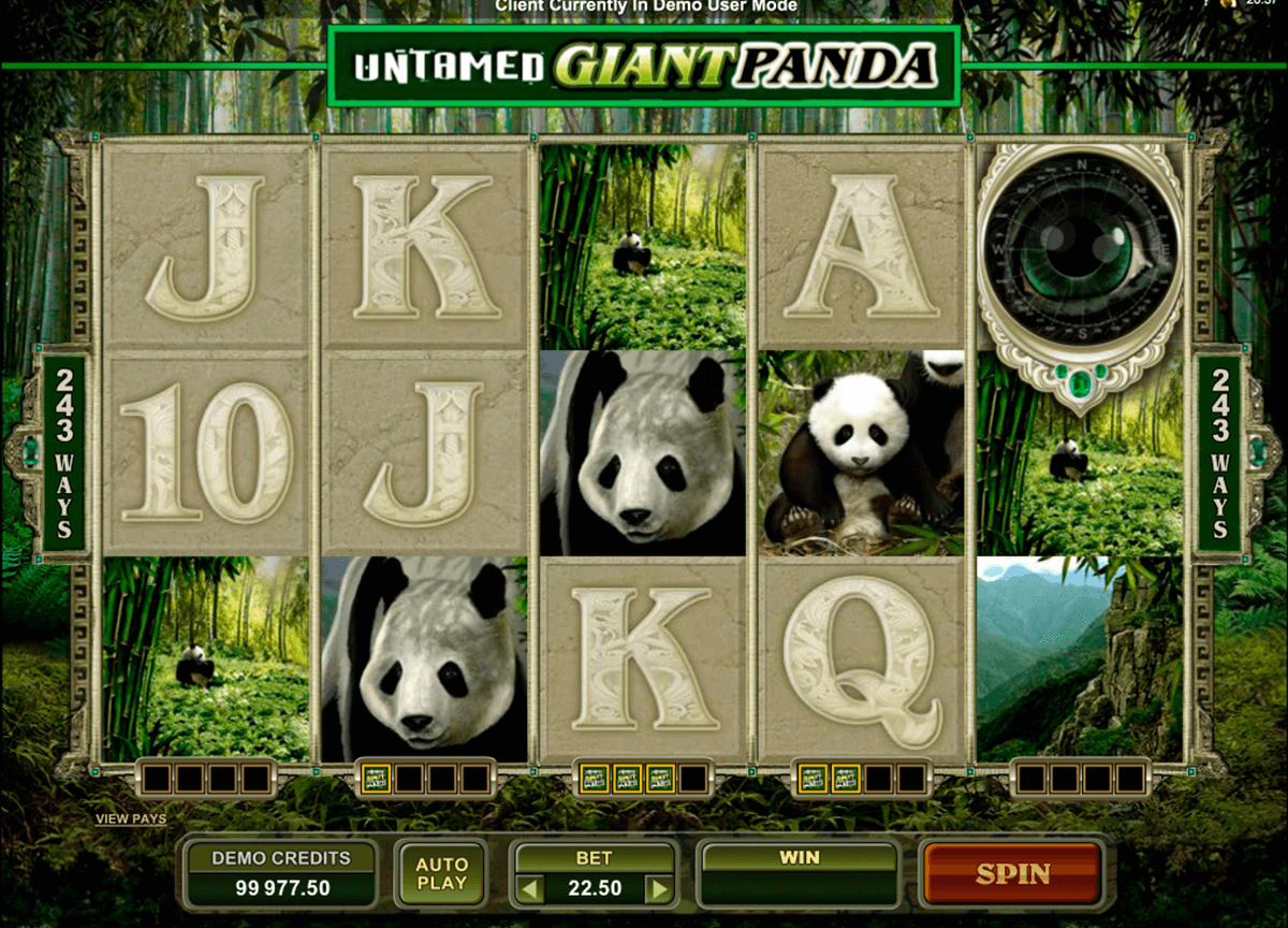 untamed giant panda microgaming casino gokkasten