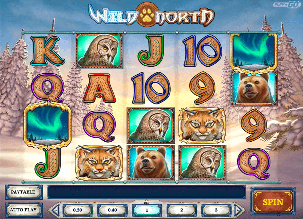 wild north playn go casino gokkasten
