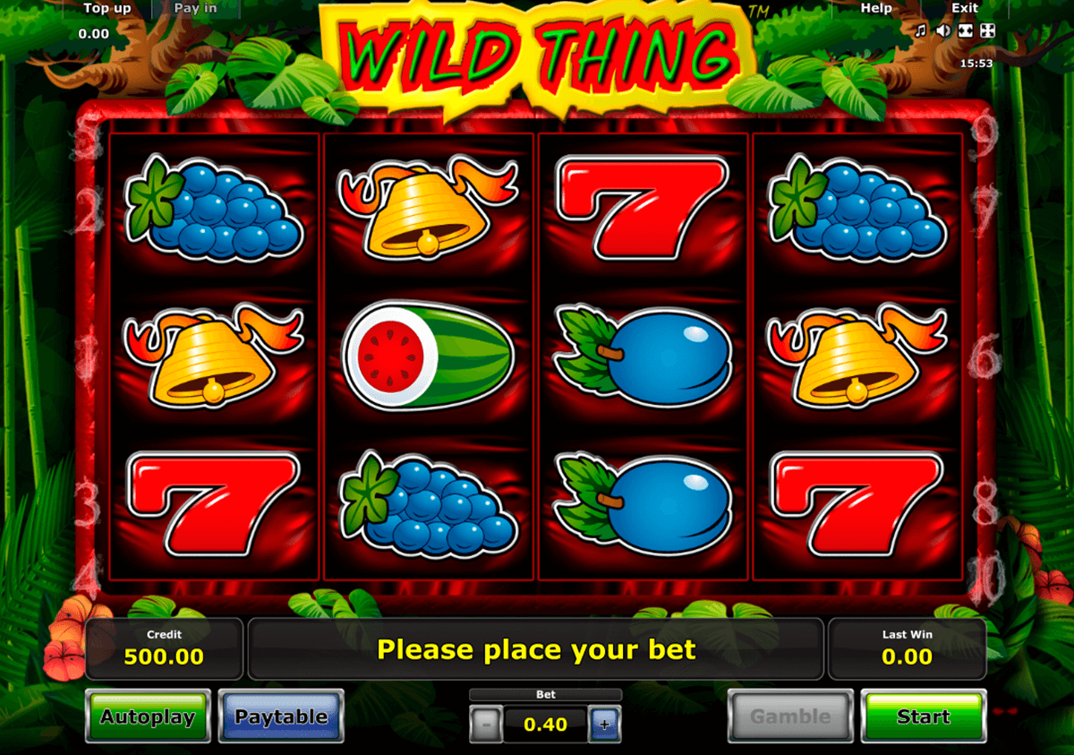 wild thing novomatic casino gokkasten