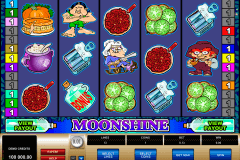 moonshine microgaming casino gokkasten