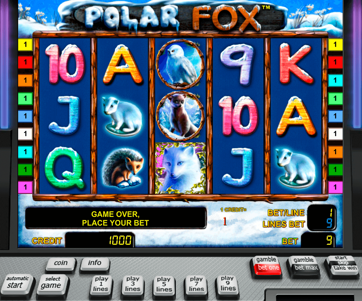 polar fox novomatic casino gokkasten