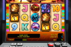 safari heat novomatic casino gokkasten 480x320