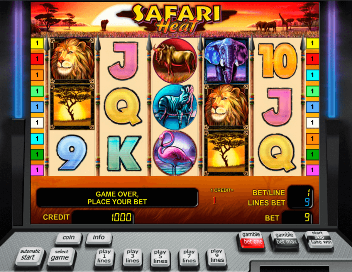 safari heat novomatic casino gokkasten