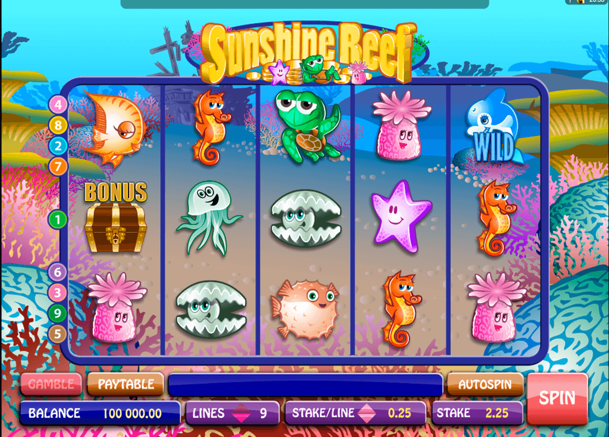 sunshine reef microgaming casino gokkasten