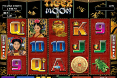 tiger moon microgaming casino gokkasten